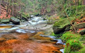 Bilder Herbst Steine Flusse Tschechische Republik Laubmoose river Mumlava, Giant mountains Natur