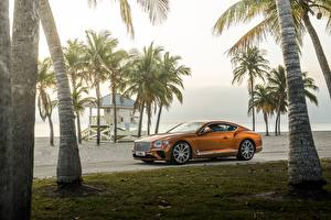 Pictures Bentley Orange Palms Luxury Continental GT V8 automobile
