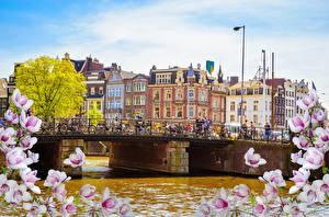 Wallpapers Bridges Netherlands Amsterdam Houses River Cities