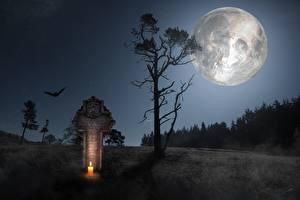 Wallpaper Candles Skulls Gothic Fantasy Night time Trees Cross Moon