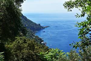 Fotos Küste Italien Meer Boot Ast Liguria Natur