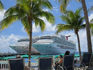 Fotos Kreuzfahrtschiff Schiffe Bootssteg Insel Resort Zwei Palmen Sonnenliege Bahamas, Carnival Glory, Carnival Sunshine