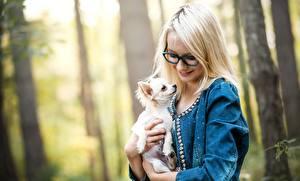 Hintergrundbilder Hunde Brille Blondine Chihuahua Lächeln Mädchens Tiere