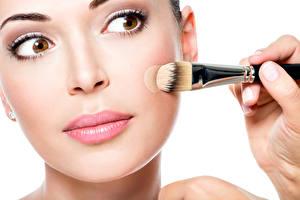 Fonds d'écran Oeils Fond blanc Visage Maquillage Pinceau Filles