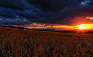 Images Fields Sunrises and sunsets Landscape photography Sky Spike Clouds Nature