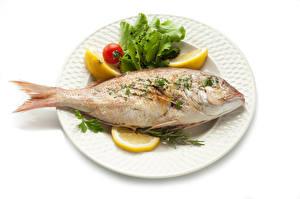 壁纸,,鱼类菜肴,柠檬,白色背景,碟,食物