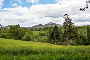 Hintergrundbilder Wälder Landschaftsfotografie Irland Gras Bäume County Wicklow, province of Leinster Natur
