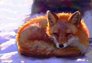 Hintergrundbilder Füchse Gezeichnet by Meorow