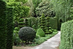Fonds d'écran Jardins Parc Arbrisseau Design Nature images