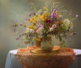 Fonds d'écran Gazania Centaurea Bouquets Nappe de table Table Vase Cloche