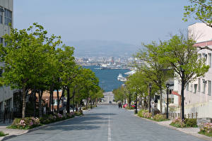 Wallpaper Japan Building Roads Street Trees Hakodate Cities