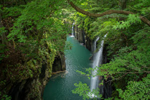 Hintergrundbilder Japan Flusse Wasserfall Felsen Ast Takachiho Gorge