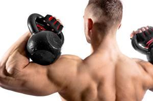 Hintergrundbilder Mann Bodybuilding Hantel Junger Mann Muskeln Rücken Weißer hintergrund sportliches