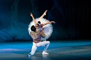 Fotos Mann Ballett Tanz Zwei Kuss Swan lake Mädchens