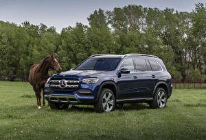 Photo Mercedes-Benz Horses Blue Metallic 2020 GLS 450 4MATIC automobile