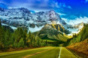Fotos Gebirge Wälder Straße Kanada Park Felsen Schnee Asphalt Banff Natur