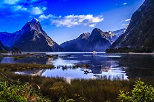 Hintergrundbilder Gebirge Neuseeland Felsen Gras Fjord Fiordland national Park, Milford Sound, Mitre Peak Natur