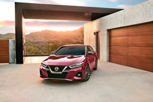 Fotos Nissan Bordeauxrot Metallisch 2019 Maxima Platinum