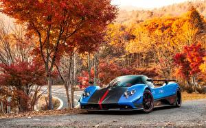Bilder Pagani Roadster Zonda Cinque