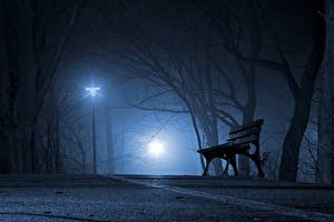 Picture Parks Night Trees Street lights Bench Fog Cities