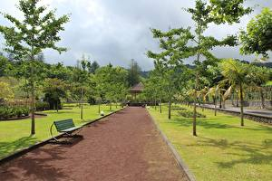 Sfondi desktop Parco Portogallo Panchina Avenue Alberi Azores, Furnas Città
