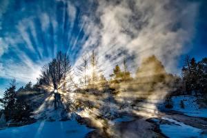 Hintergrundbilder Park Vereinigte Staaten Winter Yellowstone Schnee Bäume Lichtstrahl Nebel