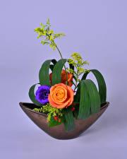 Bilder Rosen Eustoma Ikebana Farbigen hintergrund Design Blumen