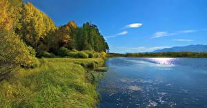Hintergrundbilder Russland Sibirien Flusse Küste Herbst Gras Bäume