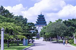 Images South Korea Parks Seoul Trees Museums National Museum of Korea