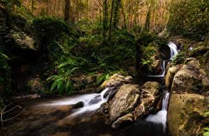 Papéis de parede Espanha Florestas Pedras Córregos El Sallent Catalonia