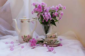 Fotos Stillleben Flammenblumen Flötenkessel Vase Tasse Blütenblätter