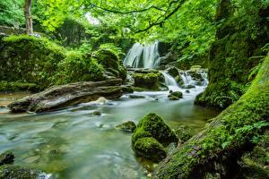 Fotos Steine Flusse Wasserfall England Laubmoose Yorkshire