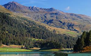 Fonds d'écran Suisse Montagnes Lac Forêts  Nature