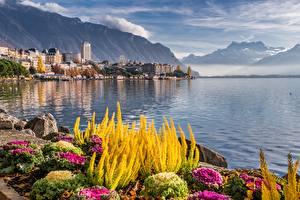 Fonds d'écran Suisse Montagne Lac Pierres Maison Montreux, lake Geneva Nature