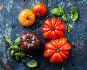 Photo Tomatoes Closeup Leaf Food