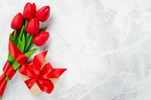 Image Tulips Red Bowknot Template greeting card flower