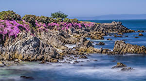 Bilder Vereinigte Staaten Küste Kalifornien Felsen