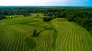 Bilder USA Felder Wälder Maryland
