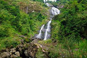 Fotos Vietnam Wasserfall Steine Felsen Strauch Sapa Natur
