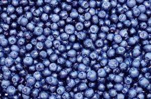 Fotos Beere Heidelbeeren Textur Viel das Essen