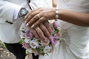 Sfondi desktop Bouquet Orologio Orologio da polso Dita Nuziali Due 2 Le mani Anello gioiello