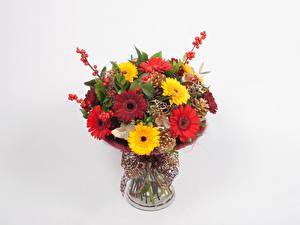 Hintergrundbilder Sträuße Gerbera Weißer hintergrund Vase Blüte
