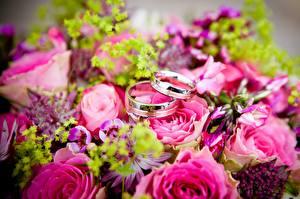 Fonds d'écran Bouquets Rosiers En gros plan Bague Or couleur 2 Fleurs
