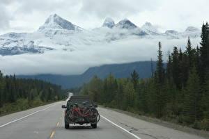 Fotos Kanada Gebirge Wälder Straße Schnee Wolke Fahrräder Hinten Rocky Mountains, Alberta