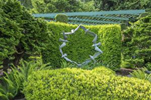 Bilder Kanada Parks Vögel Skulpturen Vancouver Strauch Design Butchart Gardens Natur