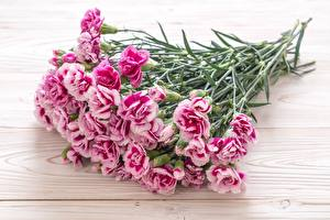 Picture Carnations Bouquet Pink color Flowers