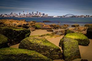 Fotos Küste Steine Brücken Australien Bucht Sydney Städte