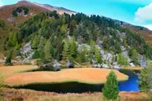 Picture Czech Republic Mountains Forest Lake Spruce Bohemian Switzerland National Park Nature
