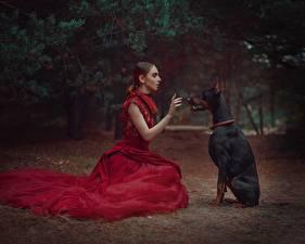 Photo Dogs Sitting Doberman Pinscher Dress Anastasia Dobrovolskaya Girls Animals