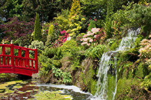 Pictures England Gardens Pond Waterfalls Bridge Crag Bush Mount Pleasant Gardens Chester Nature